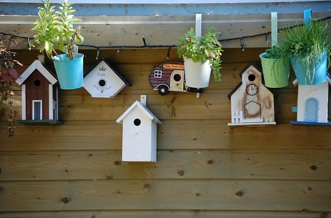 Birds House Crafts Ideas