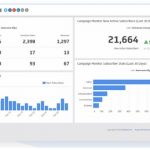 Email Subscriber Dashboard